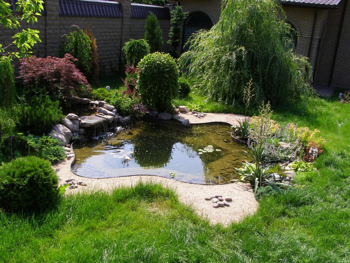 Ландшафтный дизайн дачного участка с водоемом фото